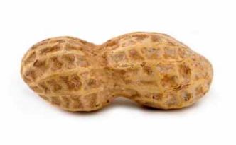 blog peanut